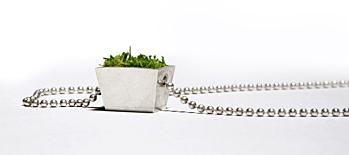 Growing Jewlery Necklace