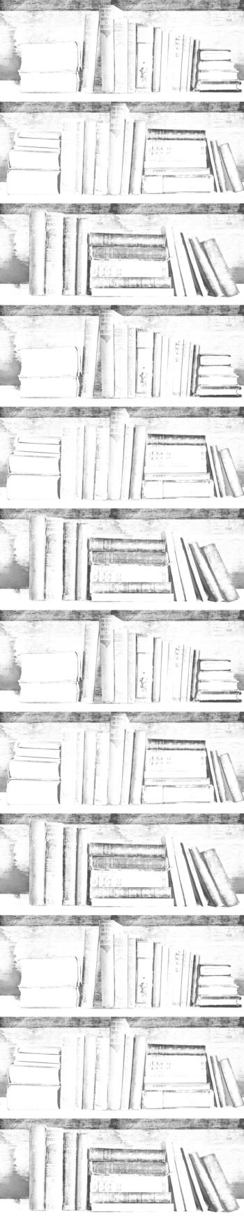 Almost White Photocopy Bookshelf Wallpaper