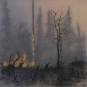 """Not So Wild Fire,"" graphite drawing, oil pastels, inkjet, 10x10 inches"